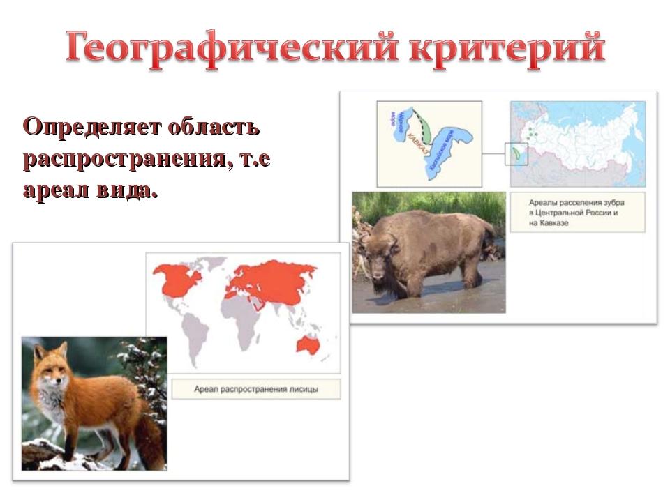 Определяет область распространения, т.е ареал вида.
