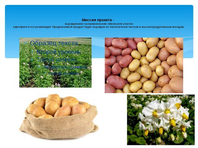 Миссия проекта - выращивание на пришкольном земельном участке картофеля и ег...