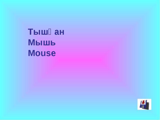 Тышқан Мышь Mouse