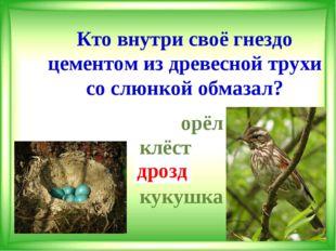 Кто внутри своё гнездо цементом из древесной трухи со слюнкой обмазал?  орёл