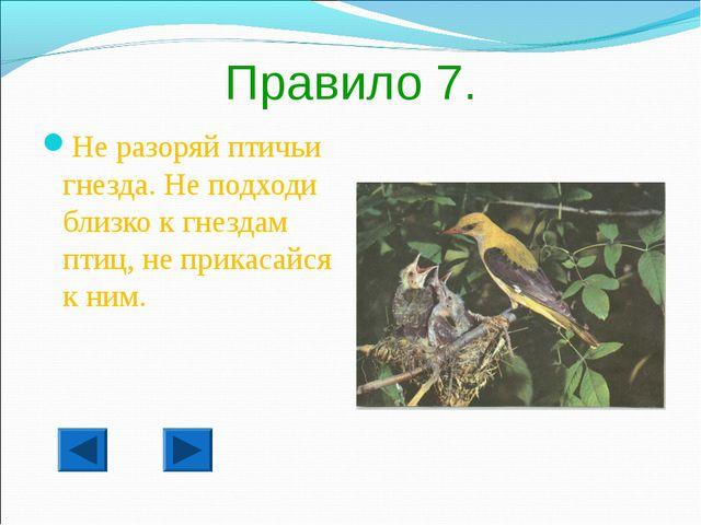 Правило 7. Не разоряй птичьи гнезда. Не подходи близко к гнездам птиц, не при...