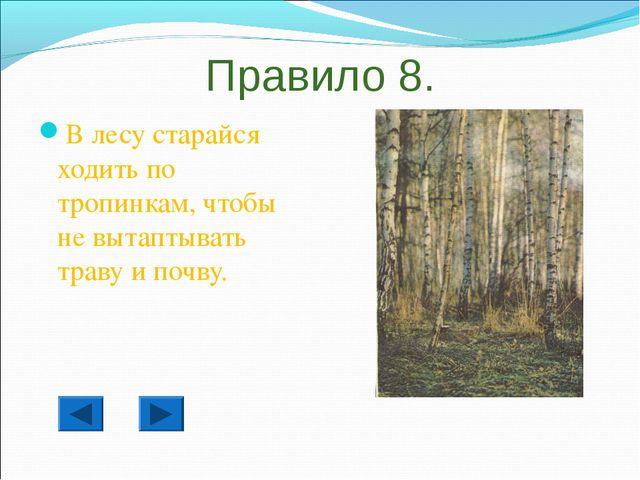 Правило 8. В лесу старайся ходить по тропинкам, чтобы не вытаптывать траву и...