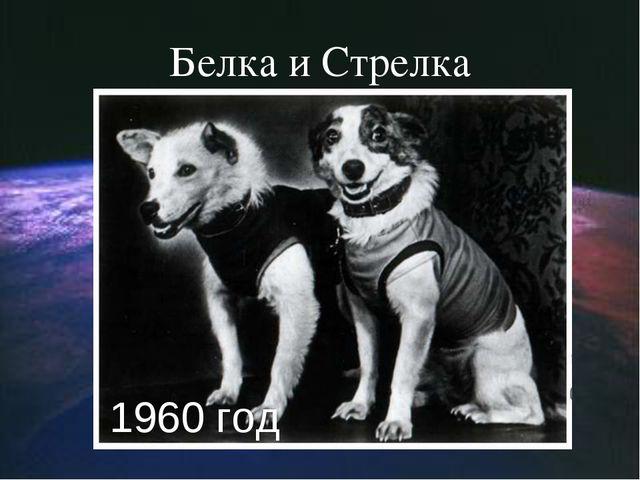 Белка и Стрелка 1960 год