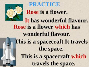 Rose is a flower. It has wonderful flavour. Rose is a flower which has wonder
