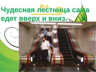 Чудесная лестница сама едет вверх и вниз. И.п.