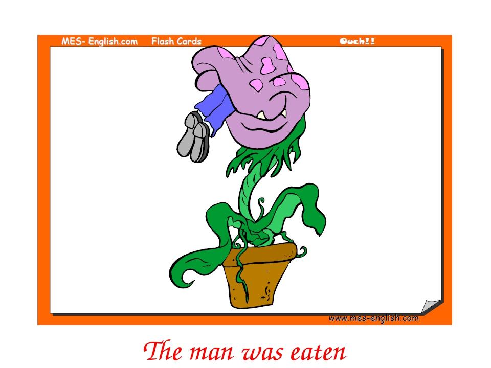 The man was eaten