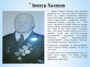 Зиннур Халиков 1900 нче елны Ташлыяр авылында туа. Авыл мәктәбендә башлангыч
