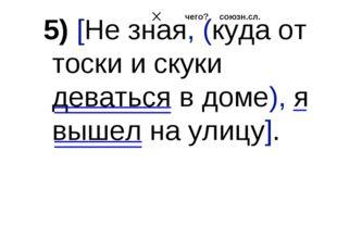 5) [Не зная, (куда от тоски и скуки деваться в доме), я вышел на улицу]. союз