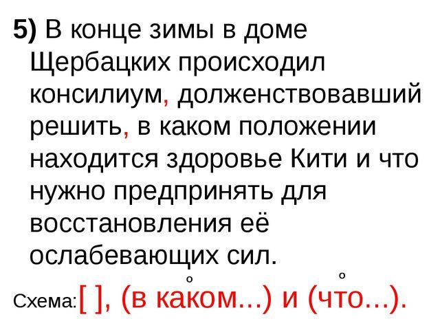 5) В конце зимы в доме Щербацких происходил консилиум, долженствовавший решит...