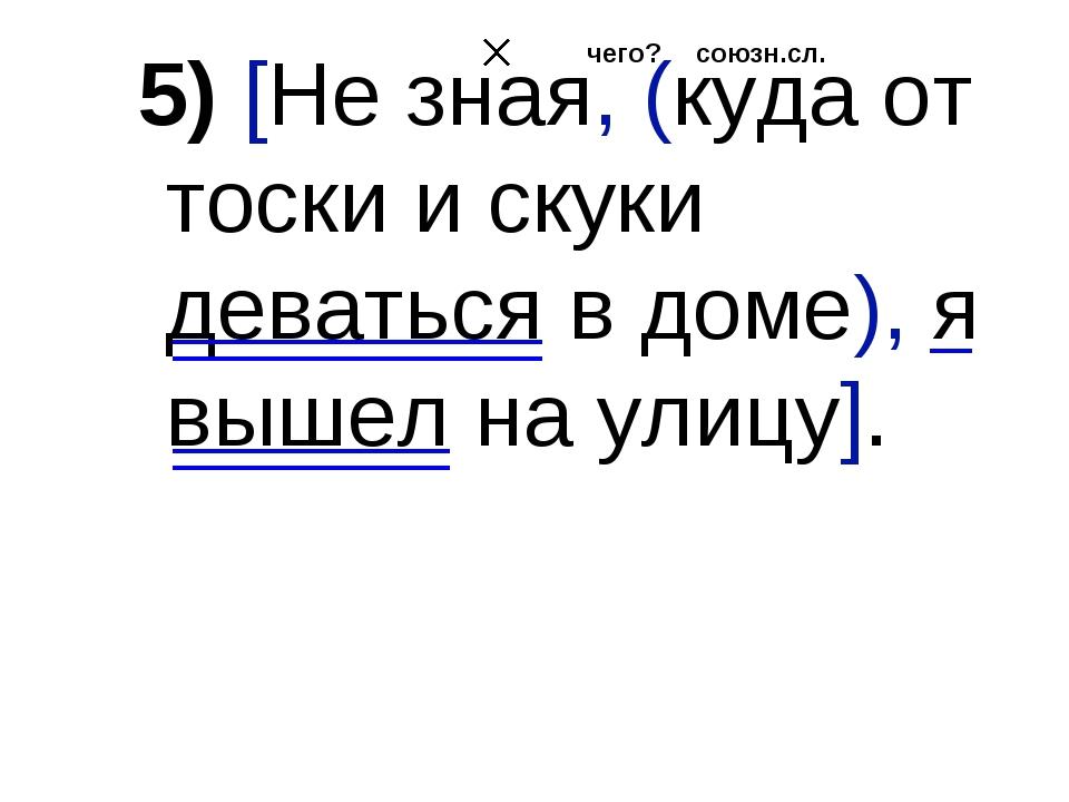 5) [Не зная, (куда от тоски и скуки деваться в доме), я вышел на улицу]. союз...