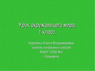 Урок окружающего мира. 1 класс. Карпенко Олеся Владимировна учитель начальных