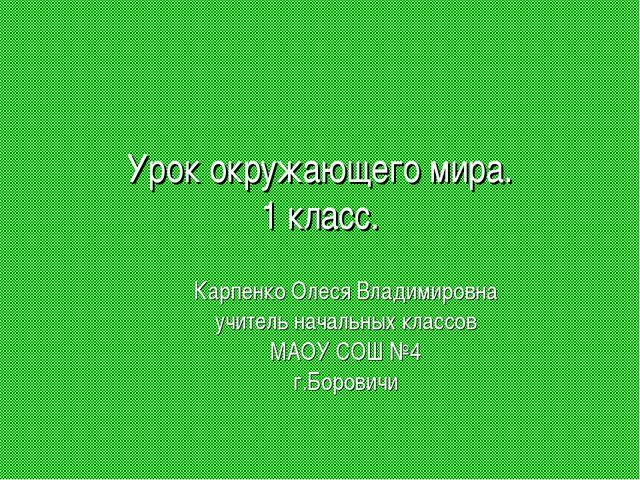 Урок окружающего мира. 1 класс. Карпенко Олеся Владимировна учитель начальных...