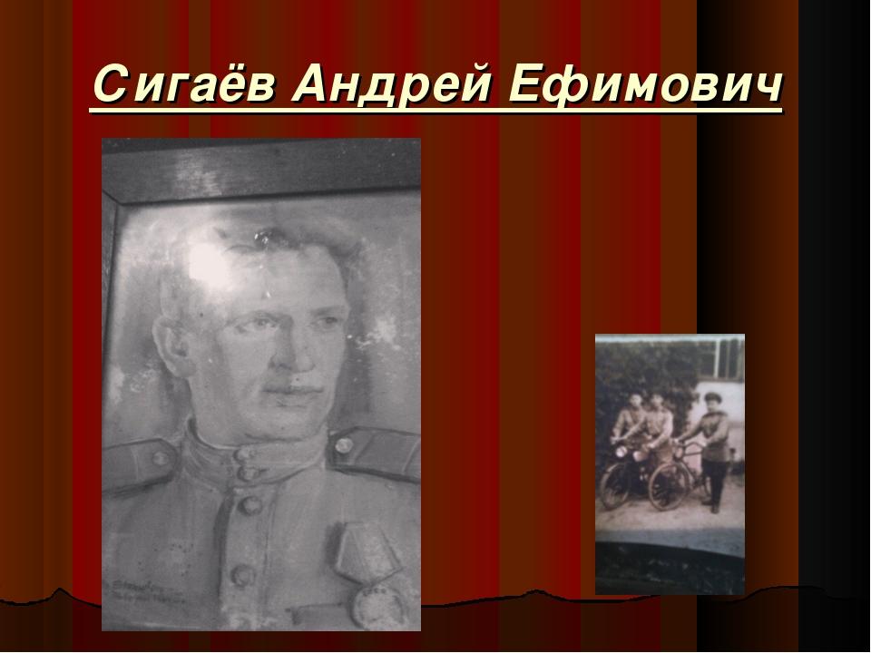 Сигаёв Андрей Ефимович