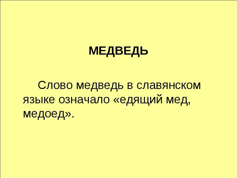 МЕДВЕДЬ Слово медведь в славянском языке означало «едящий мед, медоед».