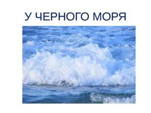 У ЧЕРНОГО МОРЯ