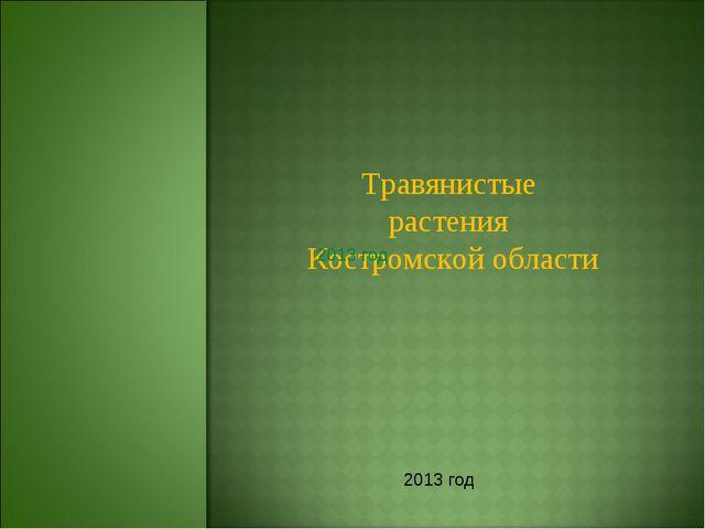 Травянистые растения Костромской области 2013 год 2013 год