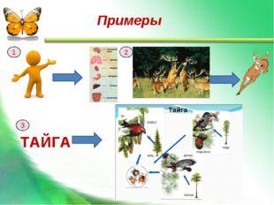 ТАЙГА 1 2 3 Примеры