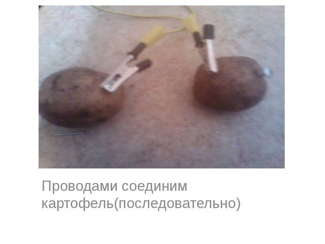 Проводами соединим картофель(последовательно)