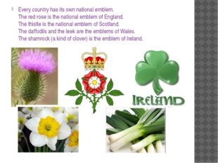 Every country has its own national emblem. The red rose is the national emble