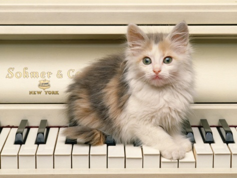 u26_1969_kotenok_na_pianino.jpg