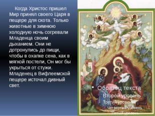 Когда Христос пришел Мир принял своего Царя в пещере для скота. Только живот