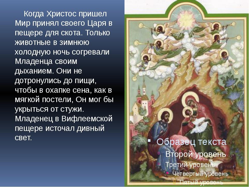 Когда Христос пришел Мир принял своего Царя в пещере для скота. Только живот...