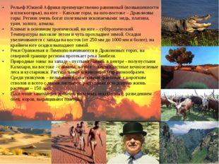 Рельеф Южной Африки преимущественно равнинный (возвышенности и плоскогорья),