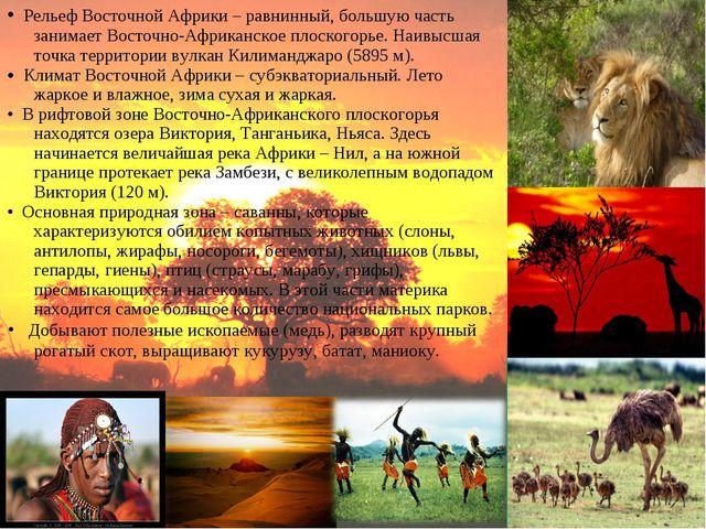 • Рельеф Восточной Африки – равнинный, большую часть занимает Восточно-Африка...