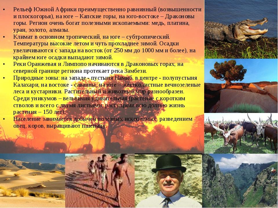 Рельеф Южной Африки преимущественно равнинный (возвышенности и плоскогорья),...