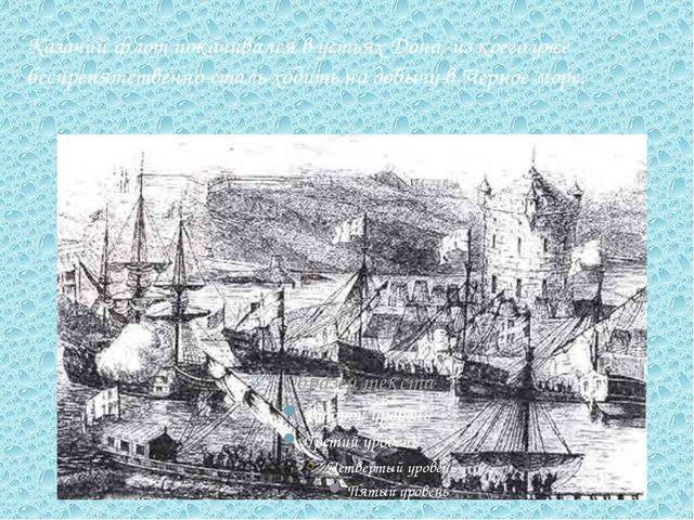 Казачий флот покачивался в устьях Дона, из коего уже беспрепятственно сталь х...