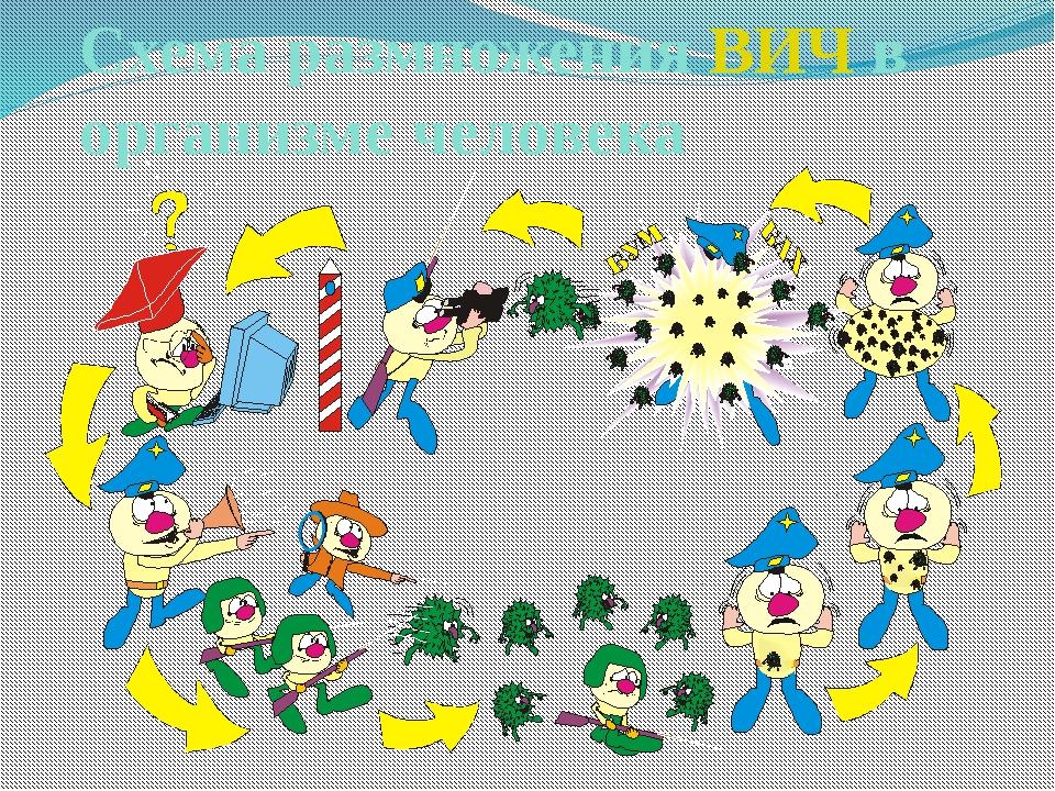 Схема размножения ВИЧ в организме человека