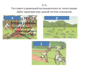 А-1. Расставьте в правильной последовательности иллюстрации. Дайте характерис