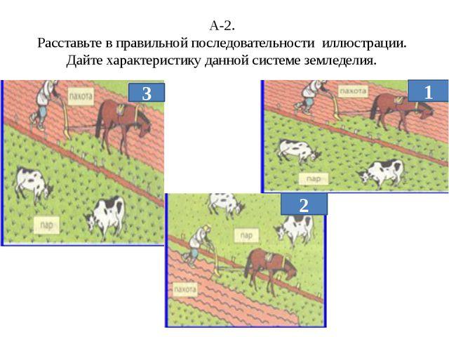 А-2. Расставьте в правильной последовательности иллюстрации. Дайте характерис...