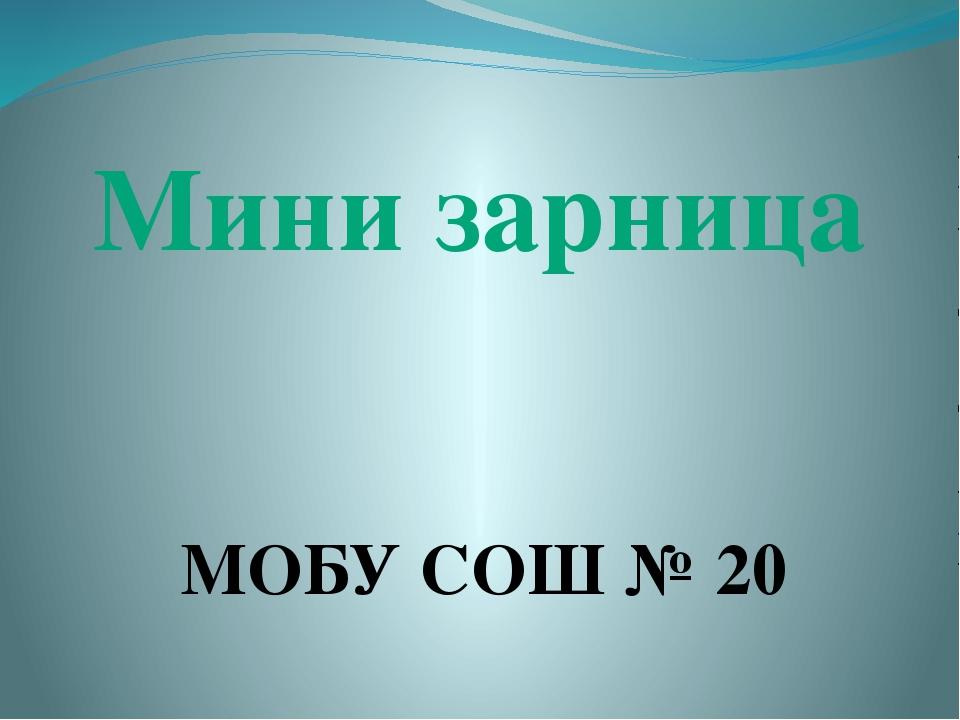 Мини зарница МОБУ СОШ № 20