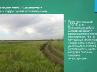 В нашей стране много охраняемых природных территорий и памятников. Памятники