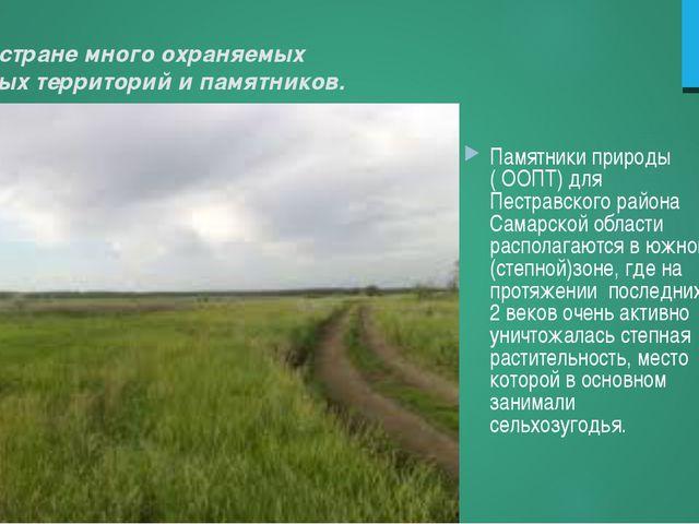 В нашей стране много охраняемых природных территорий и памятников. Памятники...