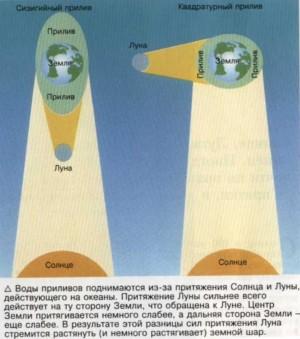http://www.astro.websib.ru/sites/default/files/resize/userfiles/priliv-300x339.jpg