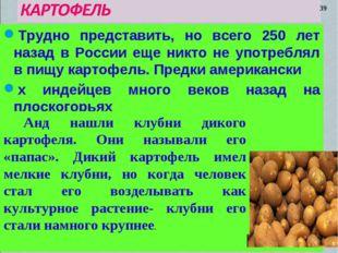 Трудно представить, но всего 250 лет назад в России еще никто не употреблял в