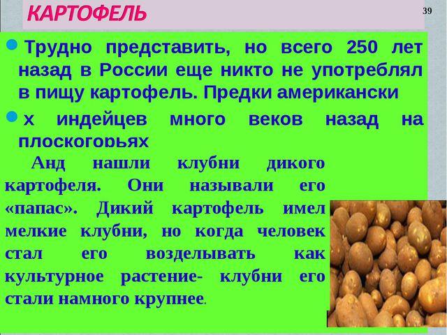 Трудно представить, но всего 250 лет назад в России еще никто не употреблял в...