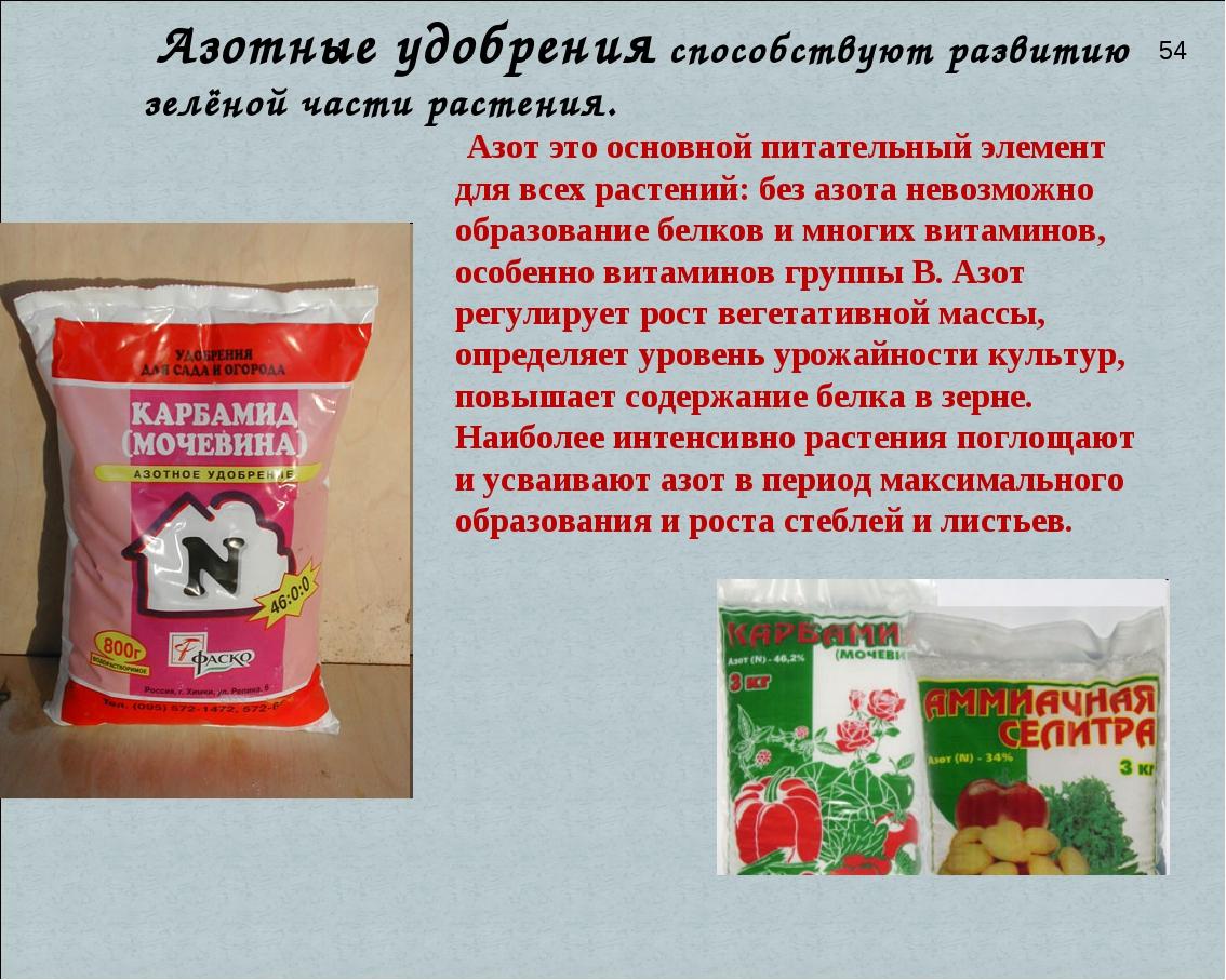 Азот это основной питательный элемент для всех растений: без азота невозможн...