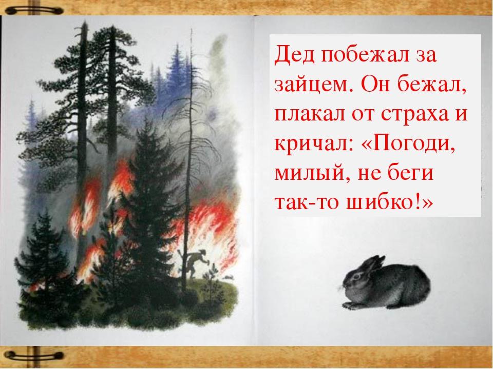 Дед побежал за зайцем. Он бежал, плакал от страха и кричал: «Погоди, милый, н...