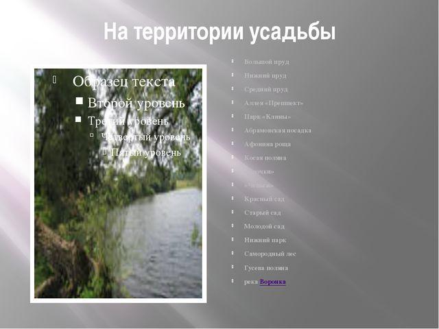 На территории усадьбы Большой пруд Нижний пруд Средний пруд Аллея «Прешпект»...
