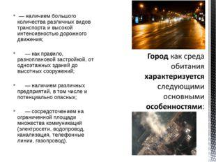 — наличием большого количества различных видов транспорта и высокой интенсив