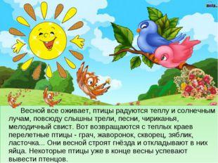 Весной все оживает, птицы радуются теплу и солнечным лучам, повсюду слышны т