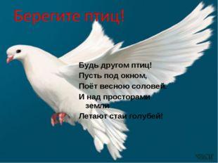 Будь другом птиц! Пусть под окном, Поёт весною соловей. И над просторами земл