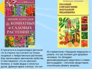 Из справочника «Народная медицина» я узнала, что лук полезен для здоровья чел