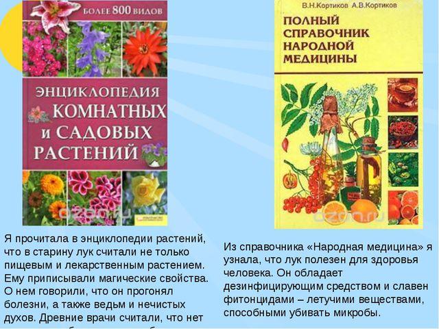 Из справочника «Народная медицина» я узнала, что лук полезен для здоровья чел...