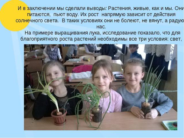И в заключении мы сделали выводы: Растения, живые, как и мы. Они питаются, п...