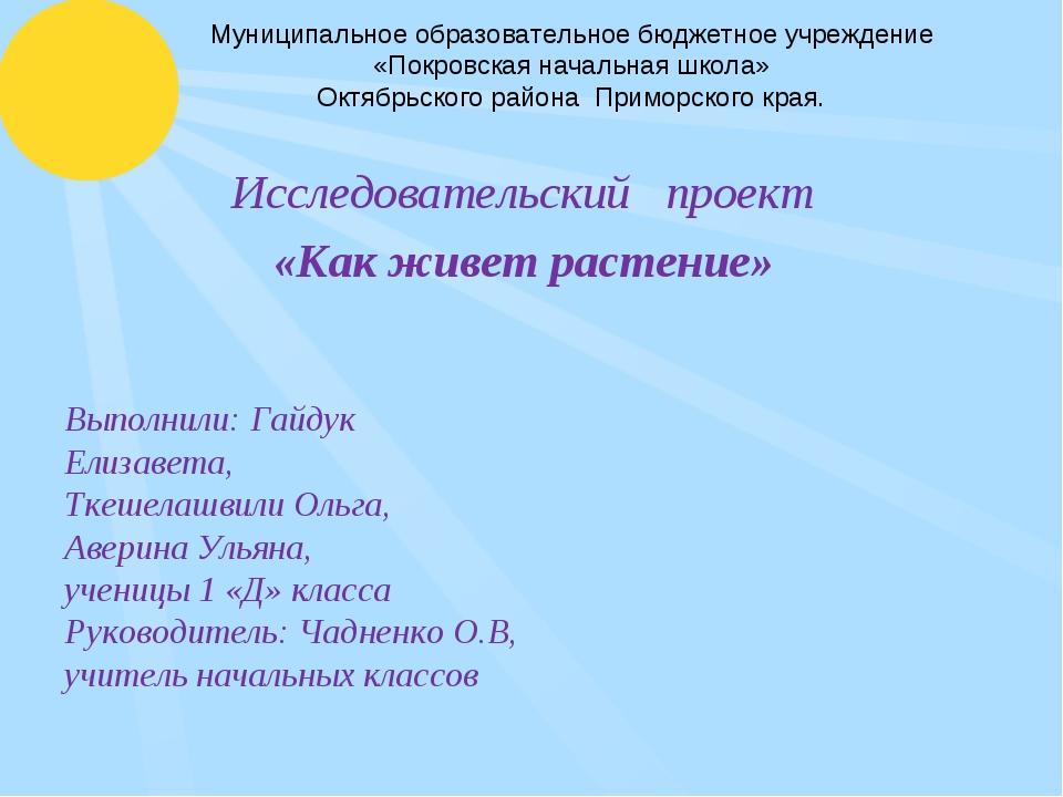 Муниципальное образовательное бюджетное учреждение «Покровская начальная школ...