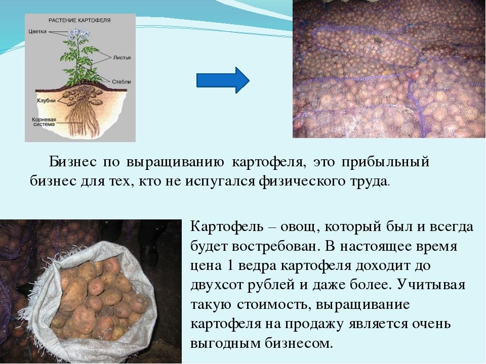 №п/п Элемент технологии Цели проводимых мероприятий Агротехнические требо...